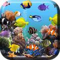 Aquarium Live Wallpaper thumbnail