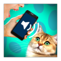 Cat Voice Translator thumbnail