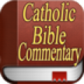 Catholic Bible Commentary thumbnail