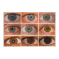 Change Eye Color thumbnail