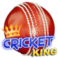 Cricket King thumbnail