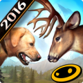 Deer Hunter 2016 thumbnail