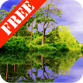 Forest Pond Free logo