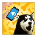 Dog Voice Translator thumbnail