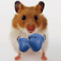 Hamster Live Wallpapper thumbnail