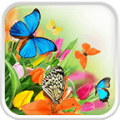 Butterfly Live Wallpaper thumbnail