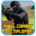 Pixel Combat Multiplayer HD thumbnail