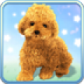 Talking Teddy Dog thumbnail
