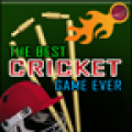 The Best Cricket Game Ever thumbnail