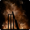 Ashes Cricket thumbnail