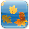 Falling Autumn Leaves ScreenSaver thumbnail