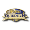 Harry Potter Quidditch World Cup thumbnail