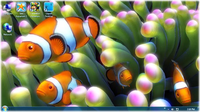 Clownfish aquarium live wallpaper free download voltagebd Choice Image